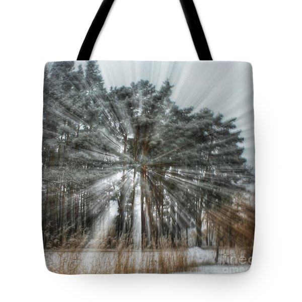 Winter Light In A Forest Tote Bag