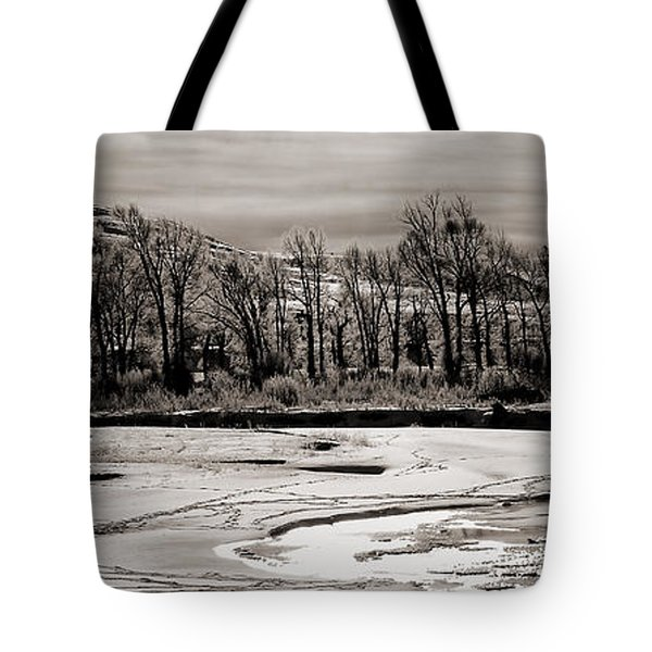 Tote Bag featuring the photograph Winter Light by J L Woody Wooden