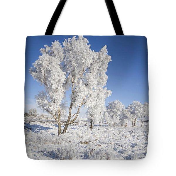 Winter Magic Tote Bag