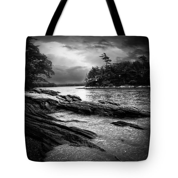 Winter Moonlight Wolfes Neck Woods Maine Tote Bag