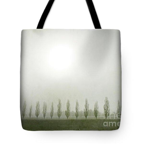 Winter Morning Londrigan 7 Tote Bag by Linda Lees