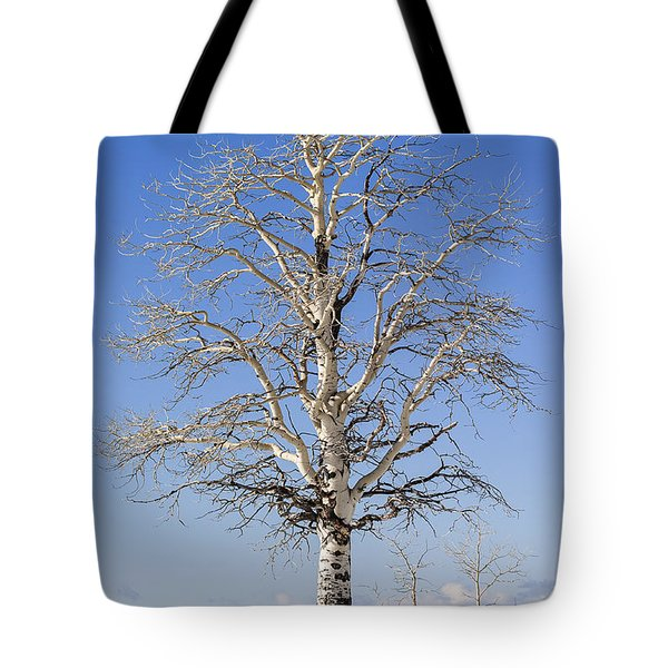 Winter Tote Bag by Muhie Kanawati