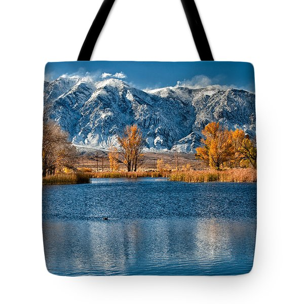 Winter Or Fall Tote Bag by Cat Connor