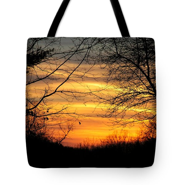 Winter Orange  Tote Bag by Justin Connor