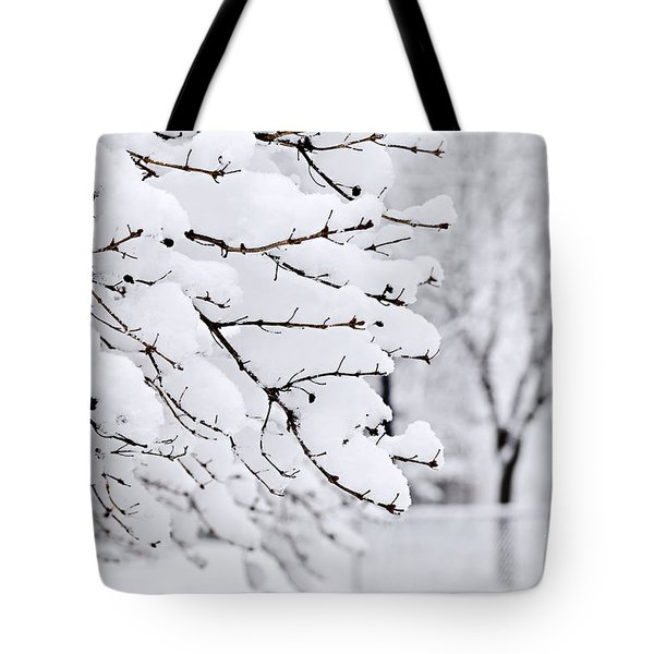 Winter Park Under Heavy Snow Tote Bag by Elena Elisseeva