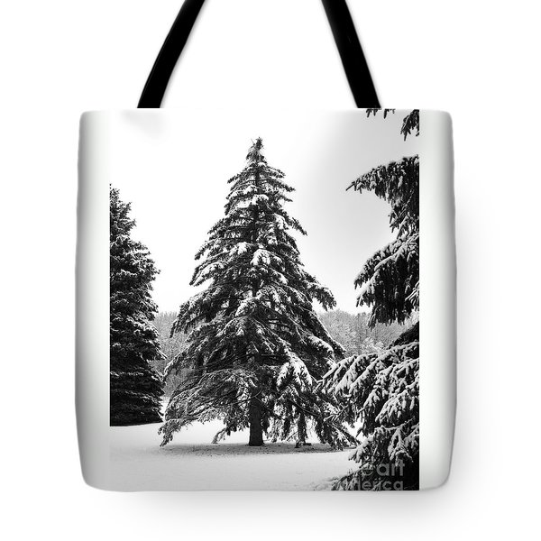 Winter Pines Tote Bag by Ann Horn