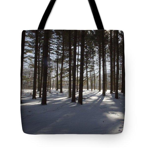 Winter Pines Tote Bag by Daniel Sheldon