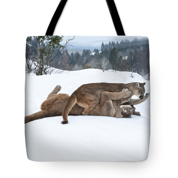 Winter Playground Tote Bag by Sandra Bronstein