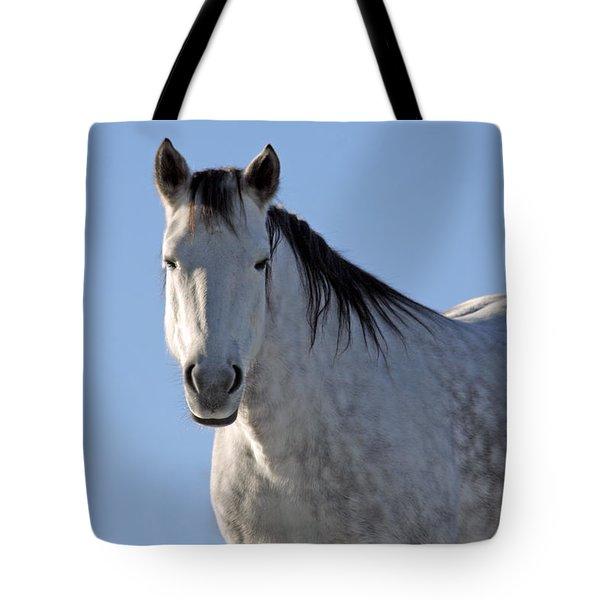 Winter Pony Tote Bag