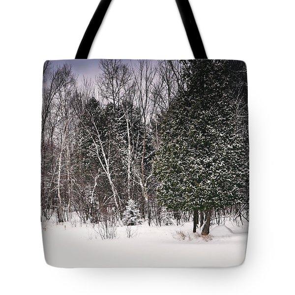 Winter Postcard Tote Bag by Gwen Gibson