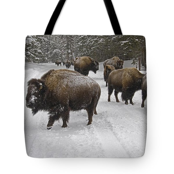 Winter Procession-signed Tote Bag