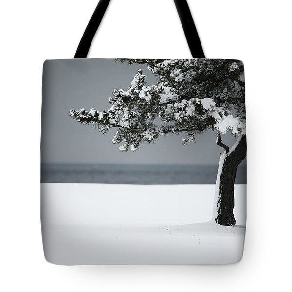 Winter Quiet Tote Bag by Karol Livote