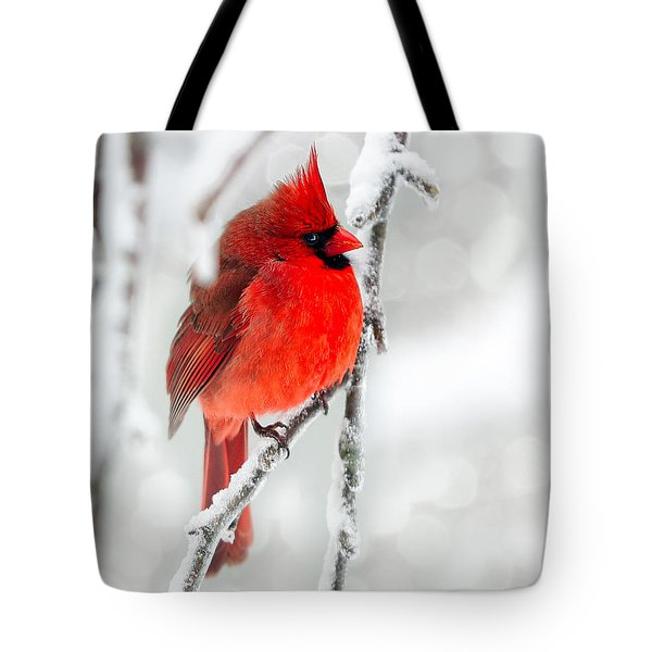 Winter Red Tote Bag by Jaki Miller