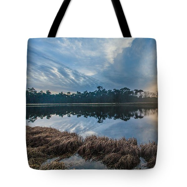 Winter Reflection-1 Tote Bag