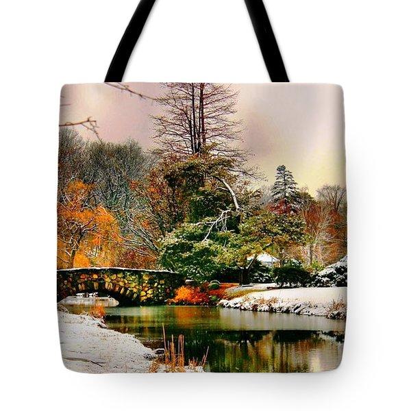 Winter Reflection Tote Bag by Judy Palkimas