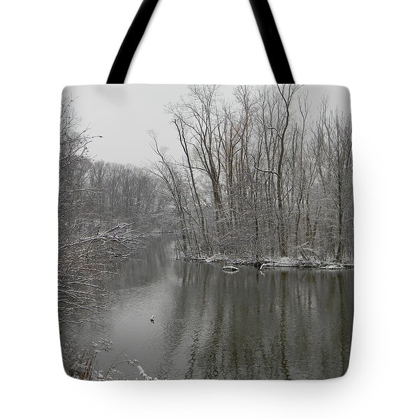 Winter Reflections 1 Tote Bag