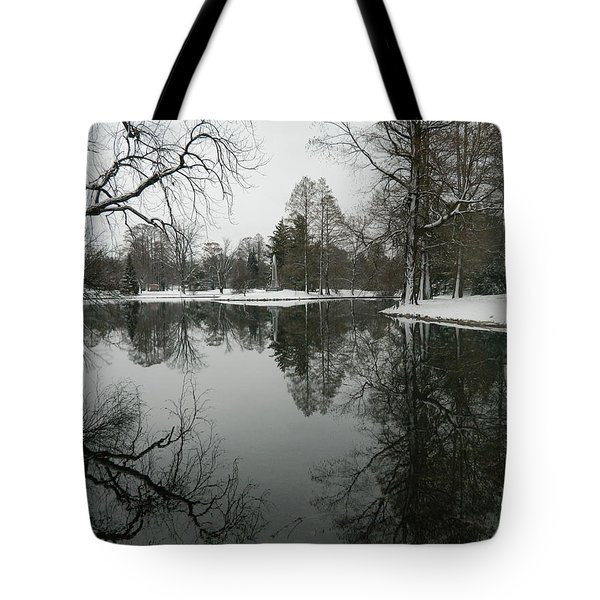 Tote Bag featuring the photograph Winter Reflections 2 by Kathy Barney