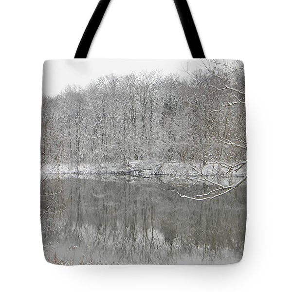 Winter Reflections 2 Tote Bag