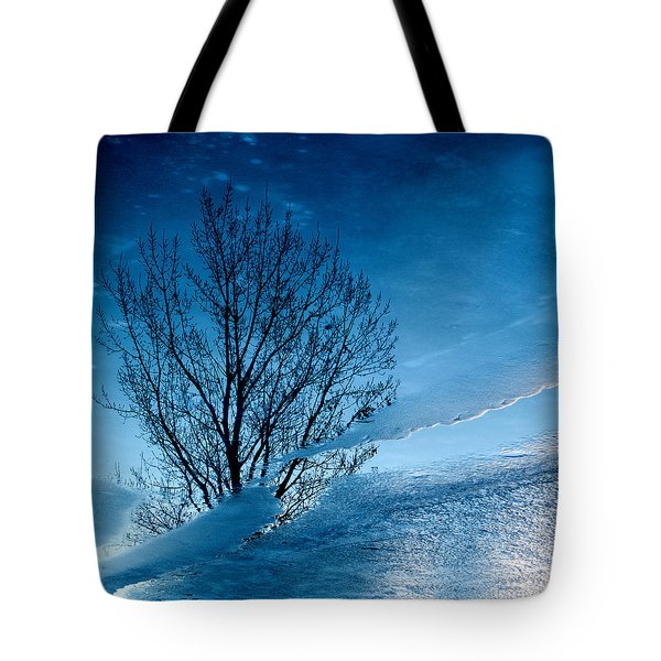 Winter Reflections Tote Bag by Don Spenner