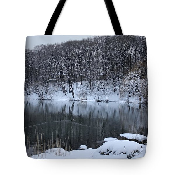 Tote Bag featuring the photograph Winter Reflections by Dora Sofia Caputo Photographic Art and Design