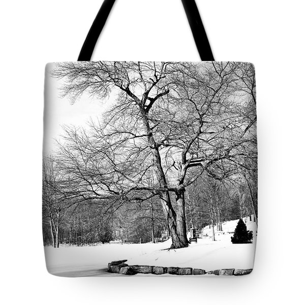 Winter Reflects In Black And White Tote Bag by Karol Livote