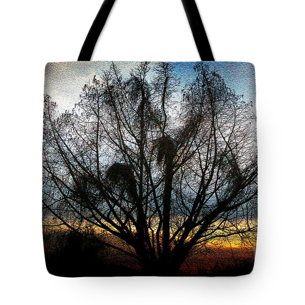 Winter Revelations Tote Bag