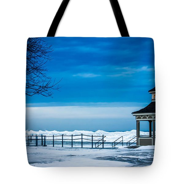 Winter Rhapsody Tote Bag