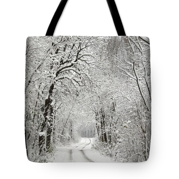 Tote Bag featuring the photograph Winter Scene 2 by Gabriella Weninger - David