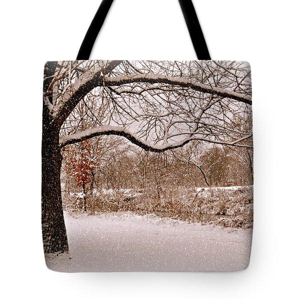Winter Scene Tote Bag by Marty Koch