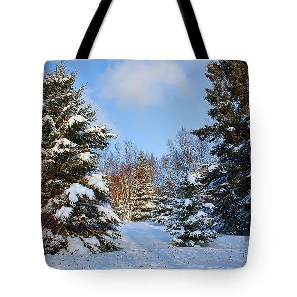 Winter Scenery Tote Bag by Teresa Zieba