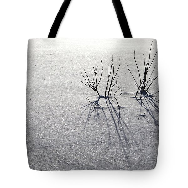 Winter Shadows Tote Bag by Michele Cornelius