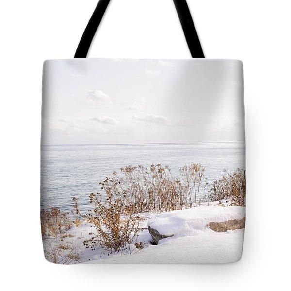 Winter Shore Of Lake Ontario Tote Bag by Elena Elisseeva