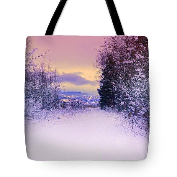 Winter Skies Tote Bag by Tara Turner