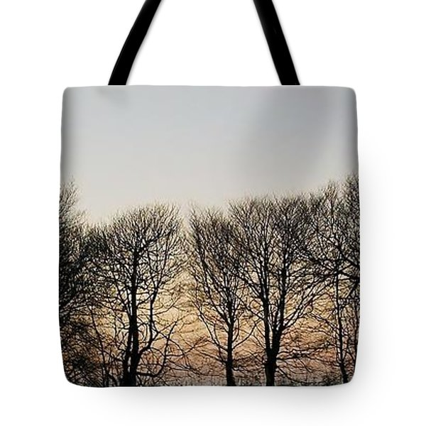 Winter Skyline Tote Bag by Richard Brookes