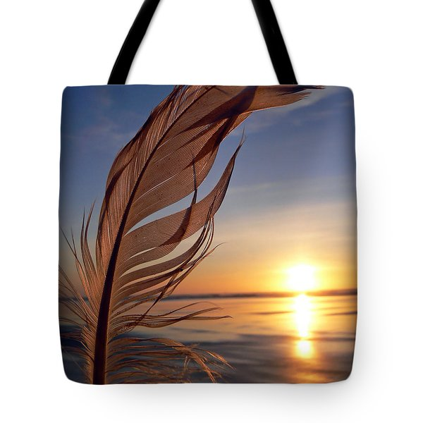 Winter Solstice 2011 Tote Bag