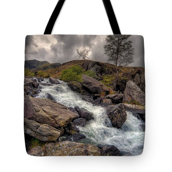 Winter Stream Tote Bag by Adrian Evans