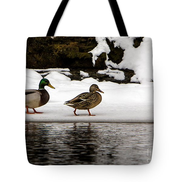 Winter Stroll Tote Bag