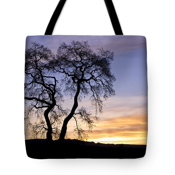 Winter Sunrise With Tree Silhouette Tote Bag by Priya Ghose