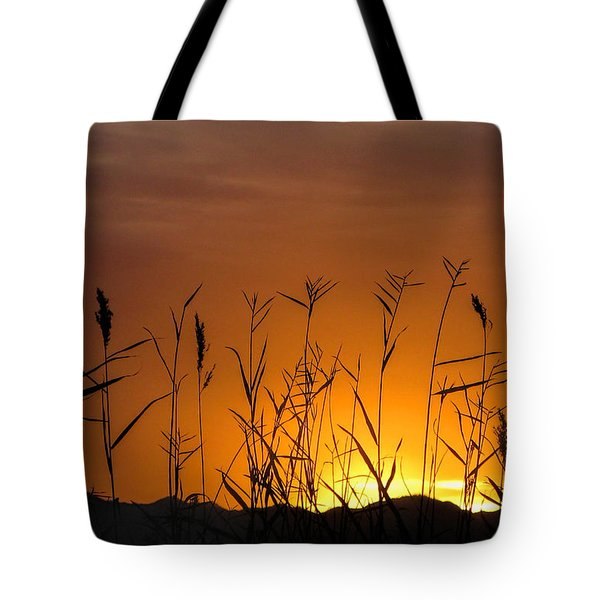 Winter Sunrise Tote Bag by Tammy Espino