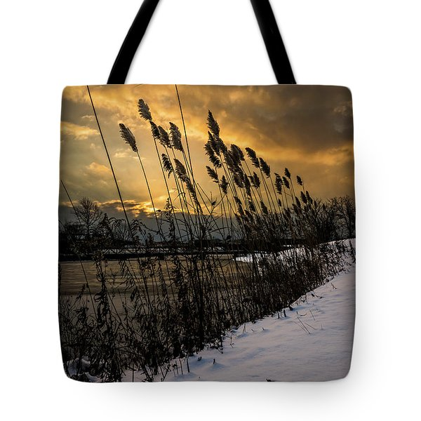 Winter Sunrise Through The Reeds Tote Bag