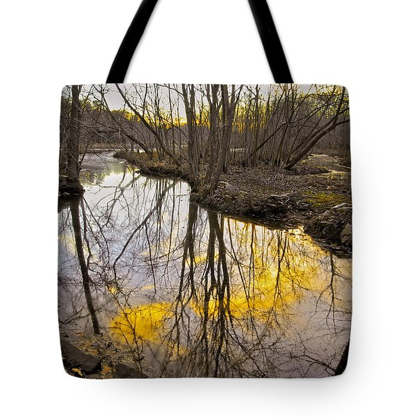 Tote Bag featuring the photograph Winter Sunset At Williston Mill by Brian Wallace