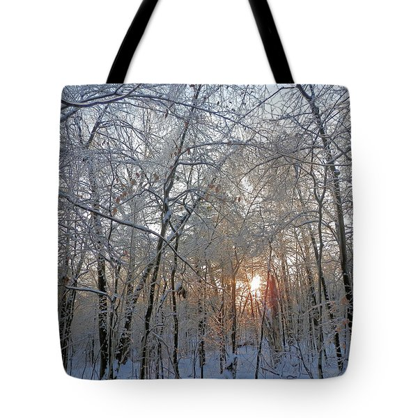 Winter Sunset Tote Bag by Pema Hou