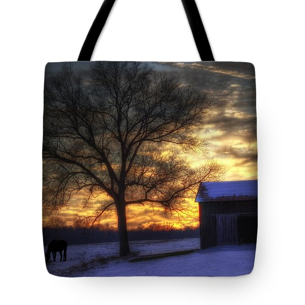 Winter Sunset Tote Bag by Skip Tribby