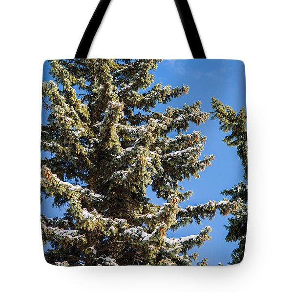Winter Tale - Featured 3 Tote Bag by Alexander Senin