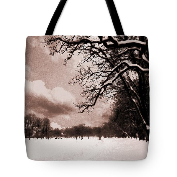 Tote Bag featuring the photograph Winter Tale by Nina Ficur Feenan