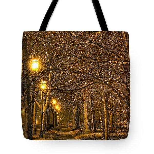 Winter Trail Tote Bag by Daniel Sheldon