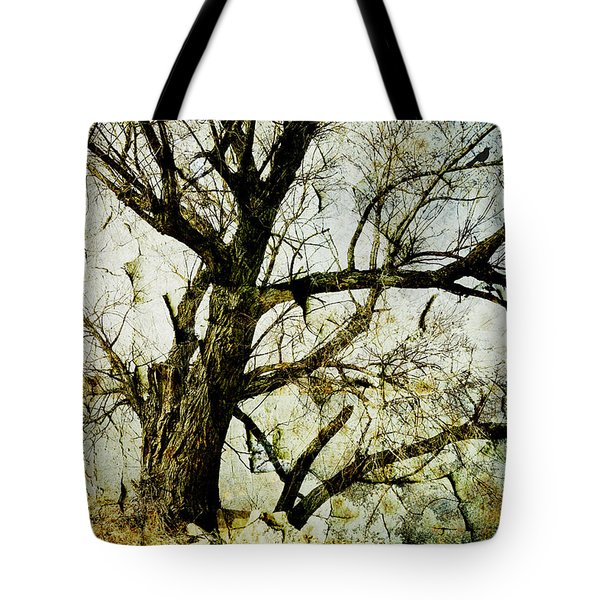 Winter Tree At The  Lake Shore  Tote Bag by Ann Powell