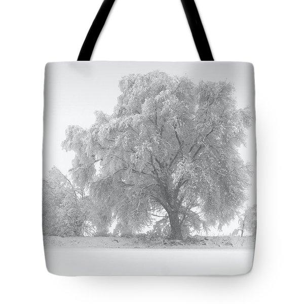 Winter Tree Tote Bag