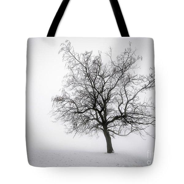 Winter Tree In Fog Tote Bag by Elena Elisseeva