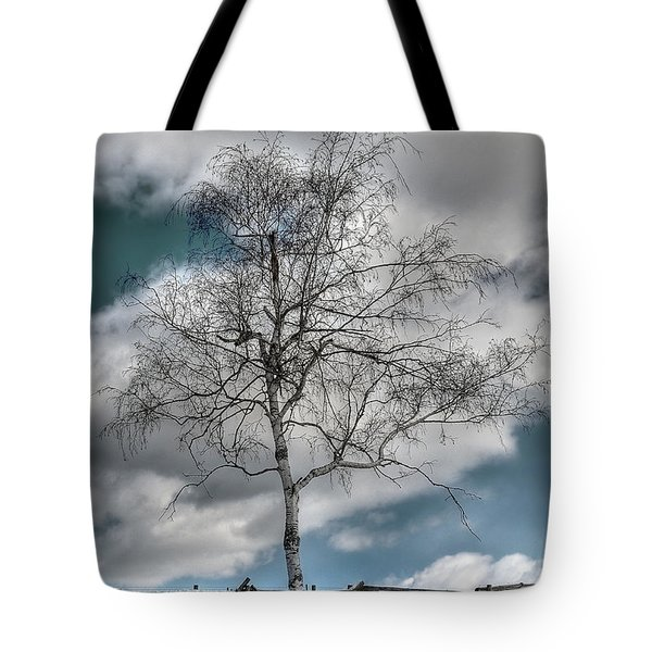 Winter Tree Tote Bag by Todd Hostetter